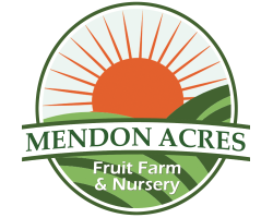 Mendon Acres Farm
